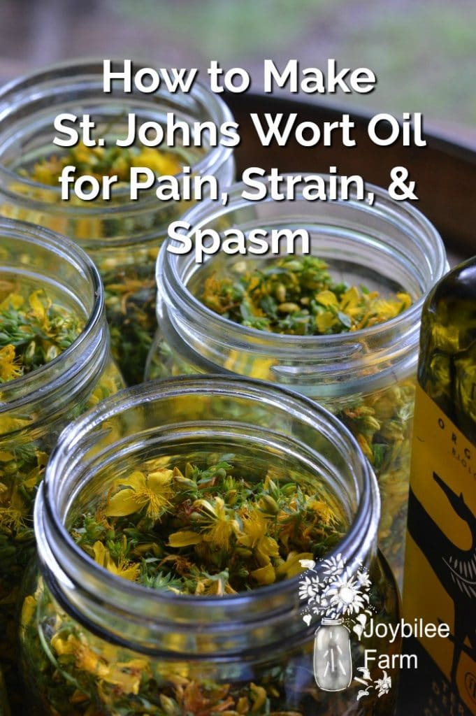 jars of St Johns Work flowers infusing in oil