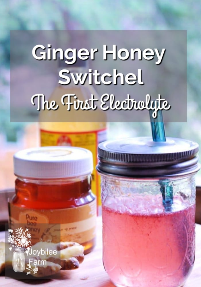 jar of honey, cider vinegar and drink with a straw and the text overlay Ginger Honey Switchel