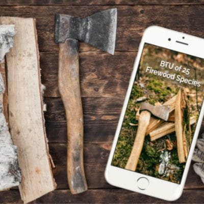 Best Firewood for Your Wood Stove So You Don't Need to Keep Feeding the Fire
