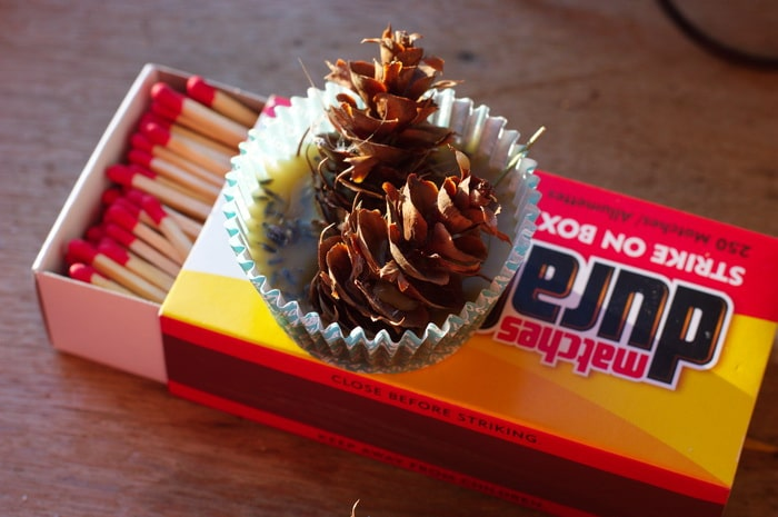 pine cone fire starters on a box of matches