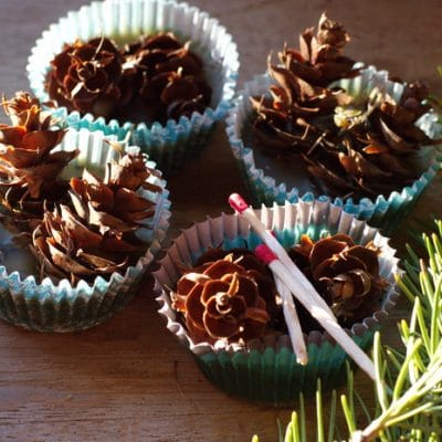 Pine Cone Fire Starters for Easier Wood Fires on Cold Mornings