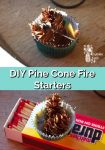 Homemade pine cone fire starters