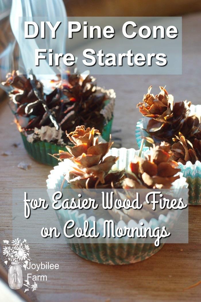 DIY Pine Cone Fire Starters