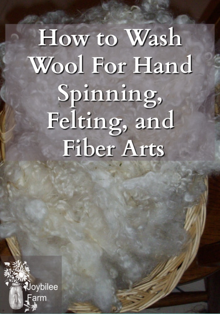 a basket full of washed and dried white wool fleece