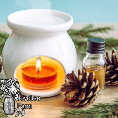 DIY Aromatherapy Wax Tarts