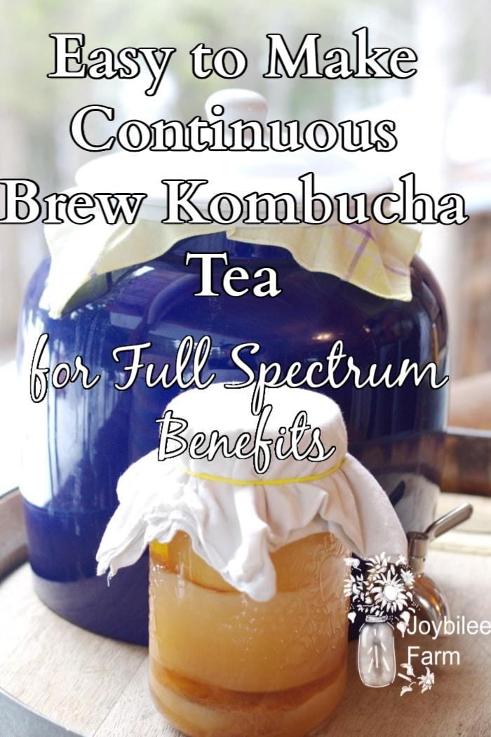 kombucha brewing in a jar and in a crock