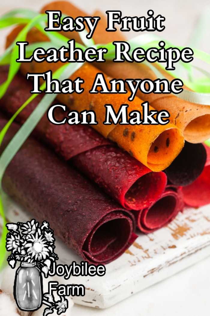 fruit leather rolls made from various types of fruit tied with a green ribbon.
