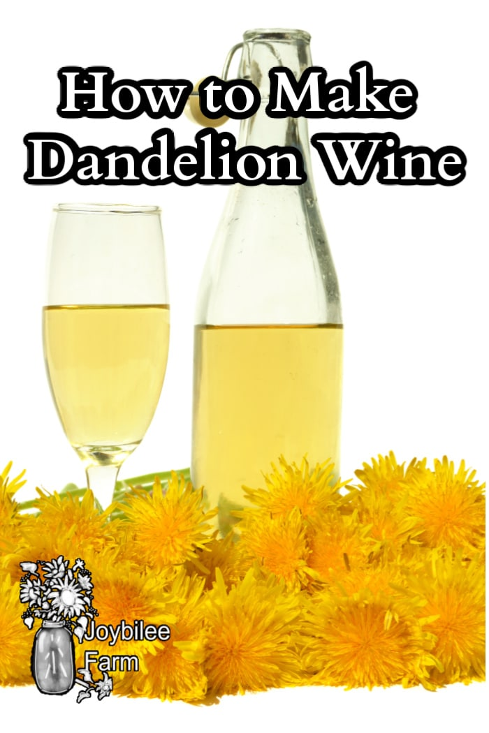 dandelion wine in a glass and bottle with dandelion flowers surrounding .