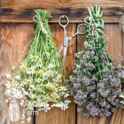 3 Ways to Dry Herbs at Home