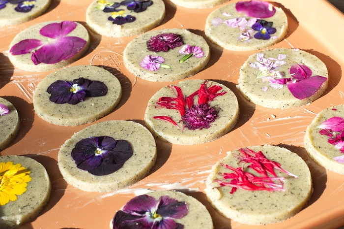 gluten free edible flower cookies on a tray, prepared for baking