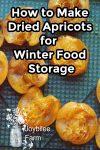 fresh, sliced apricots on a dehydrator tray