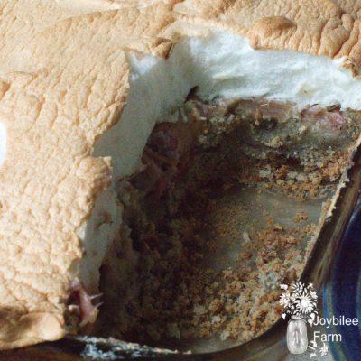 Rhubarb Custard Dessert that's Gluten Free and Dairy Free