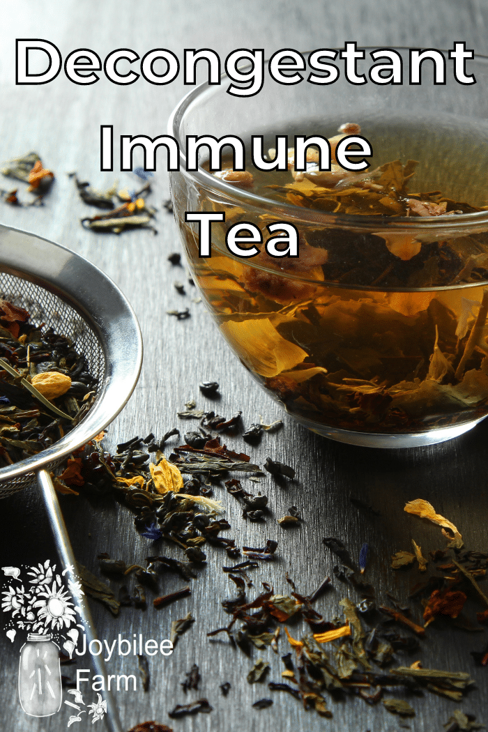 steeping herbal tea surrounded with dried herbs and tea herbs in a tea strainer.