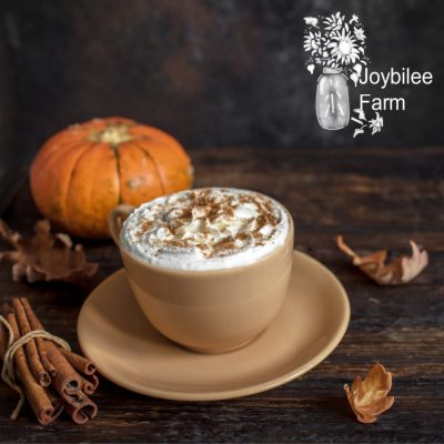 Spiced Pumpkin Syrup for Lattes and Expresso