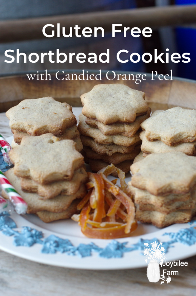 Plate of star - shaped short bread cookies with candied orange peel, and candy canes.