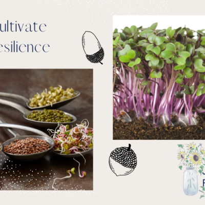 7 Ways to Cultivate Resilience