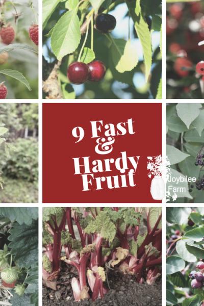 9 hardy fruit