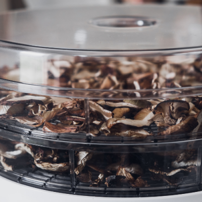 How to Dehydrate Mushrooms so they Last the Winter